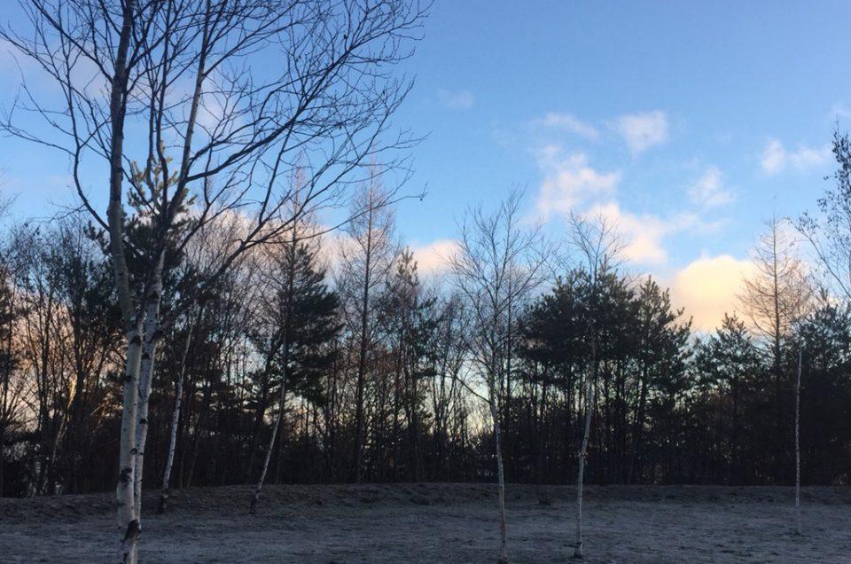 霜が降りる月
